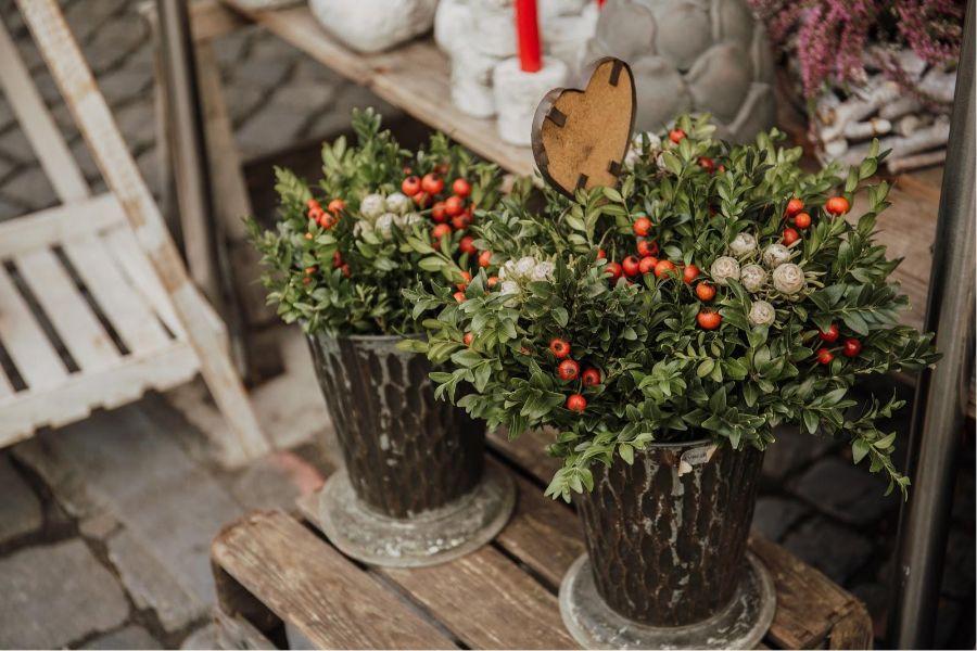 bouquet di fiori natalizi da regalare