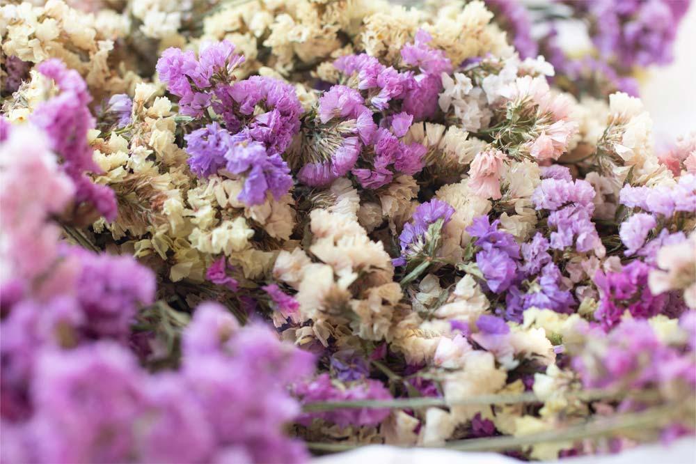 fiori secchi viola