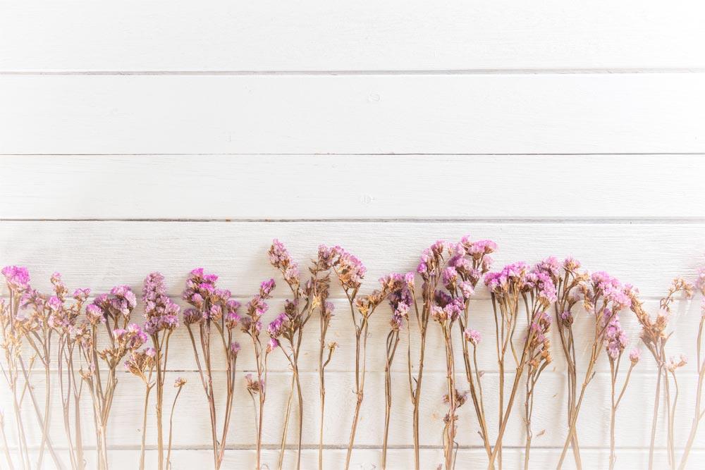 fiori secchi per l'home decor
