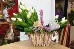 Piante per ricorrenze speciali realizzate da il Fiore