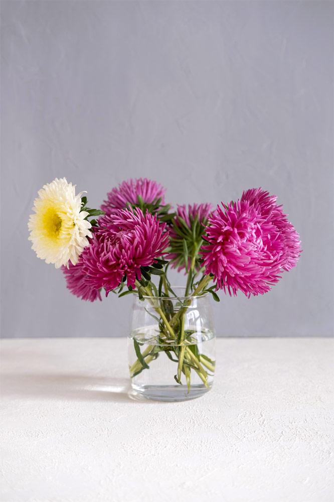 fiori recisi decorativi