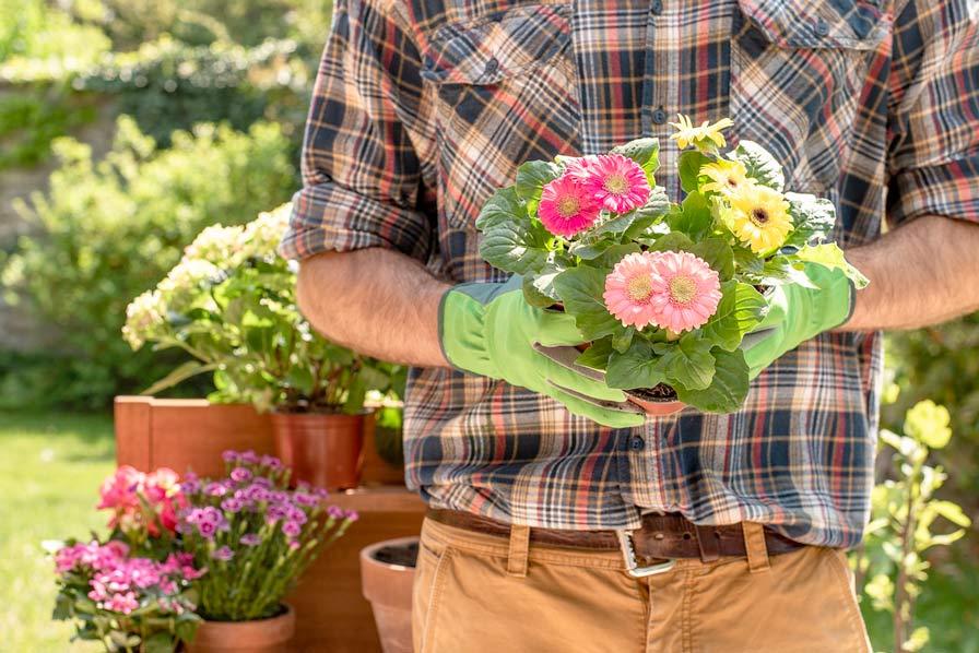 giardiniere composizione floreale
