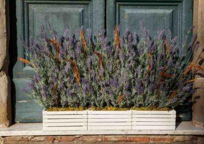composizione con fiori di lavanda del fiore all'occhiello a Pisa